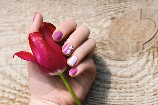 Mano femminile con il disegno viola del chiodo che tiene bello tulipano rosa.