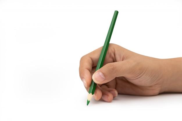 Mano femminile con la matita di colore verde isolata su bianco