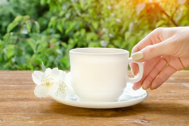 Mano femminile con una tazza bianca di tè e gelsomino. vegetazione sullo sfondo.