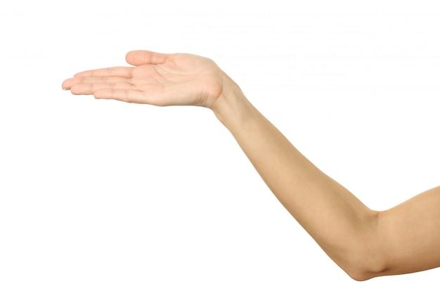 Mano femminile tesa. gesturing della mano della donna isolato su bianco