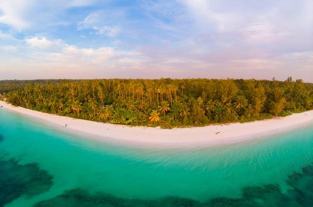 Mar dei caraibi della scogliera dell'isola tropicale della spiaggia di vista aerea. molucche indonesiane