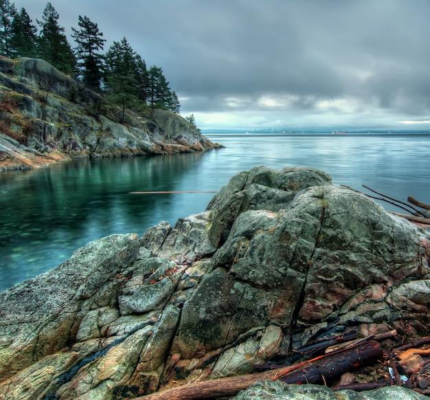 Mare calmo accanto alla formazione rocciosa con alberi di natura