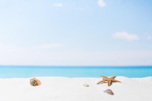 Mare e sabbia bianca sulla spiaggia tropicale vuota, sfondo estivo