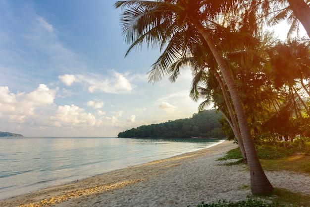 Mare, paradiso tropicale,