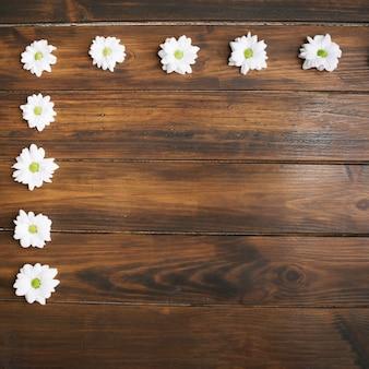 Margherite disposte in cornice su legno