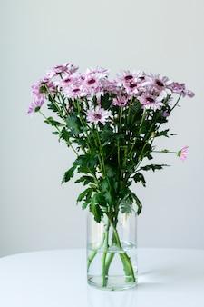 Margherite viola in un vaso trasparente su uno sfondo grigio con spazio per il testo
