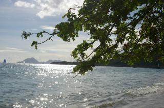 Martinica isola, ile