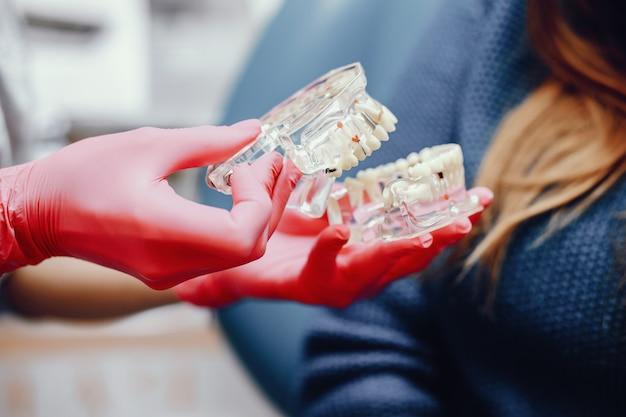 Mascella artificiale nell'ufficio del dentista