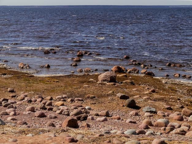 Massi rotondi sulle rive del golfo di finlandia.