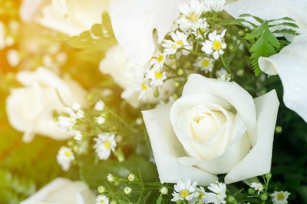 Bouquet Sposa Margherite E Rose.Matrimonio Bouquet Da Sposa Con Rose Bianche E Margherite Foto