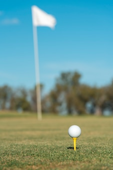 Mazza da golf di angolo basso sul campo