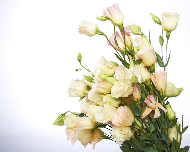 Mazzo dei fiori di eustoma su fondo bianco. copia spazio
