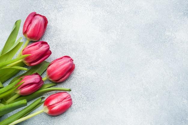 Mazzo dei tulipani cremisi rosa su un azzurro. copyspace
