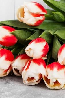 Mazzo dei tulipani rosa bianchi su un fondo grigio