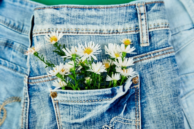 Mazzo del fiore bianco nella tasca dei jeans
