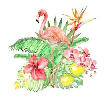Mazzo dell'acquerello tropicale