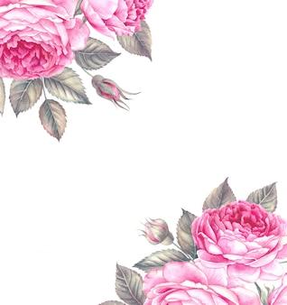 Mazzo dell'illustrazione dell'acquerello di rosa.