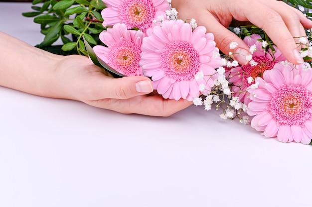 Mazzo delle gerbere rosa su un fondo bianco. celebrazione della festa della donna e della festa della mamma. spazio libero per il testo
