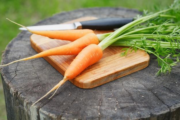 Mazzo di carote fresche su legno rustico