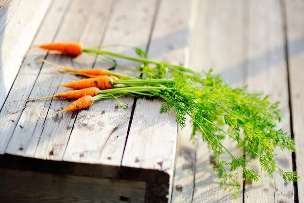 Mazzo di carote organiche su vecchie fasi in legno