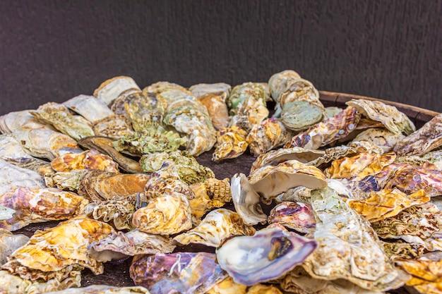 Mazzo di conchiglie di ostriche marine vuote su un barilotto per la decorazione. sfondo strutturale, copia spazio per il testo.