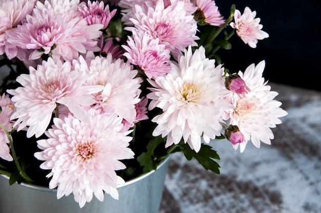 Mazzo di crisantemi rosa