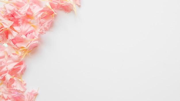 Mazzo di petali rosa
