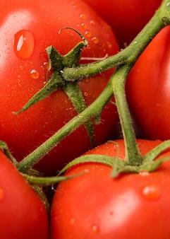 Mazzo di pomodori del primo piano