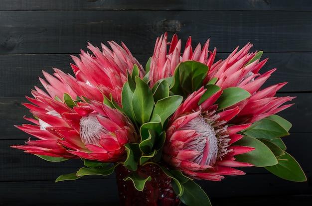 Mazzo di protea rosso del carciofo su un fondo scuro di legno