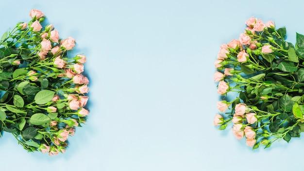 Mazzo di rose rosa su sfondo blu