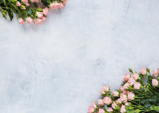 Mazzo di rose sull'angolo dello sfondo di cemento
