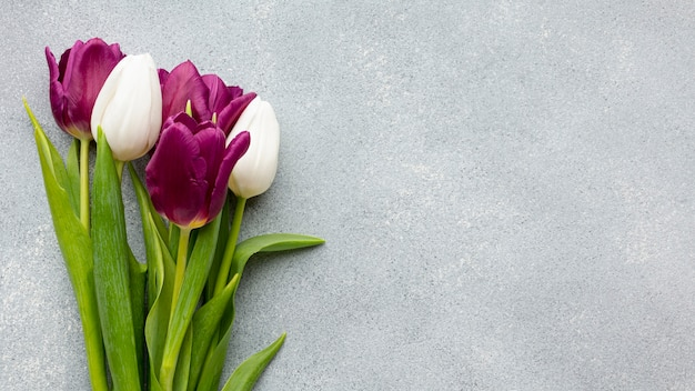 Mazzo di tulipani con spazio di copia