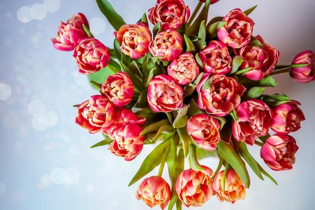 Mazzo di tulipani su sfondo pastello