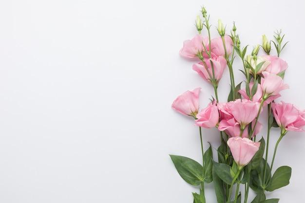 Mazzo di vista superiore delle rose rosa con lo spazio della copia