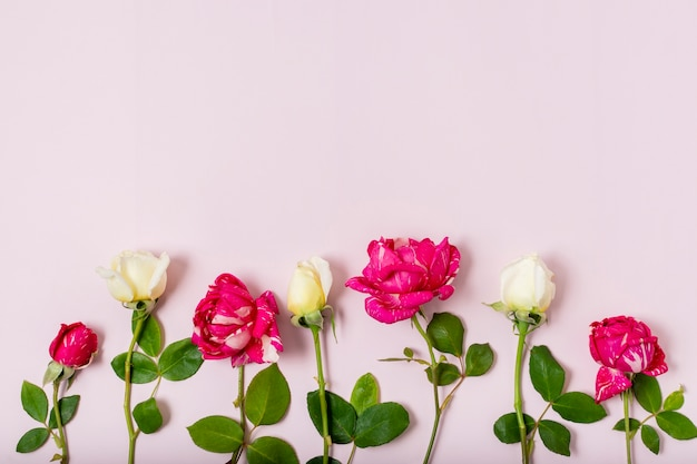 Mazzo di vista superiore di rose rosse e bianche