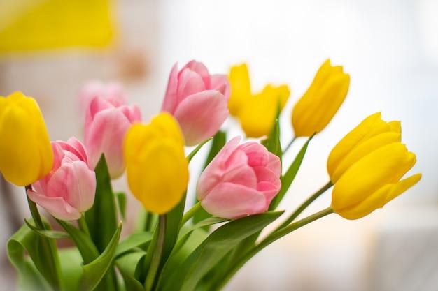 Mazzo fresco dei tulipani, fine in su. concetto di fiore di primavera.