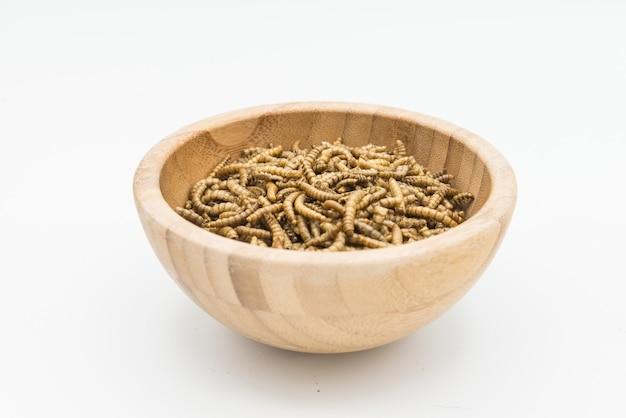 Mealworms crostacei tenebrio molitor isolato