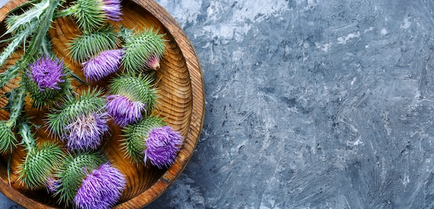 Medicina di erbe e omeopatia