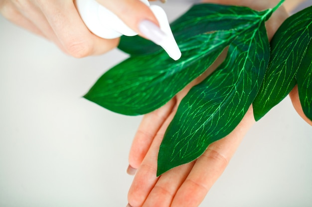 Medicina di erbe. lo scienziato, dermatologo, produce il prodotto cosmetico con erbe naturali organiche in laboratorio. concetto di bellezza cura della pelle sana. crema, siero.