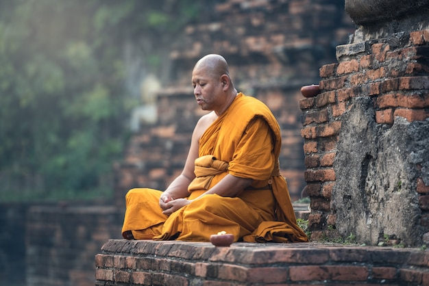 Meditazione del monaco buddista nel tempio