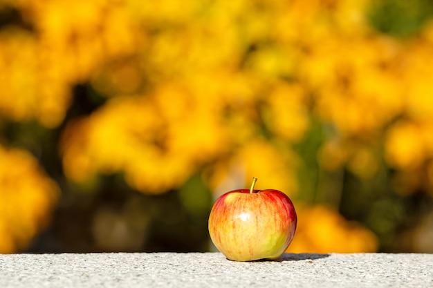 Mela solitaria con ombra in una giornata di sole sui marciapiedi di granito
