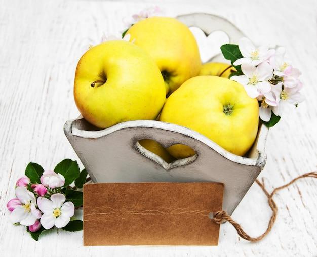 Mele e fiori di melo