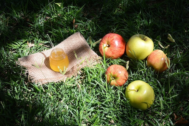 Mele fresche del giardino in un cestino con miele.