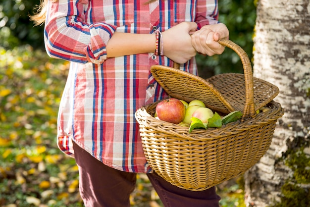 Mele pre di raccolto del giovane adolescente nel giardino