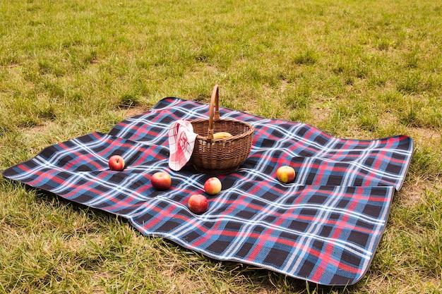 Mele rosse sulla coperta con cestino da picnic nel parco