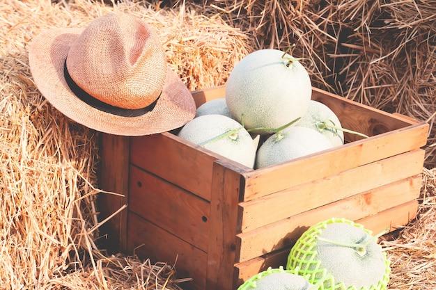 Meloni biologici in scatola di legno su paglia. mercato degli agricoltori frutta sana