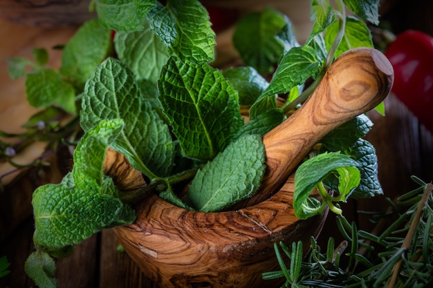 Menta fresca in mortaio di legno d'ulivo