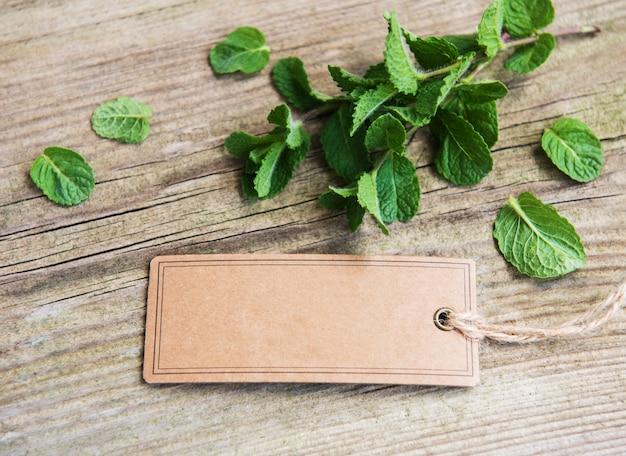 Menta verde con vecchia etichetta di carta