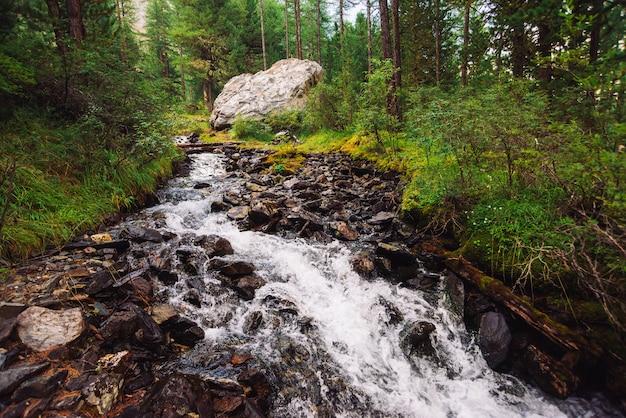 Meraviglioso flusso di acqua veloce nel selvaggio torrente di montagna