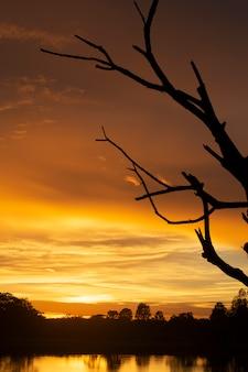 Meraviglioso tramonto o alba.